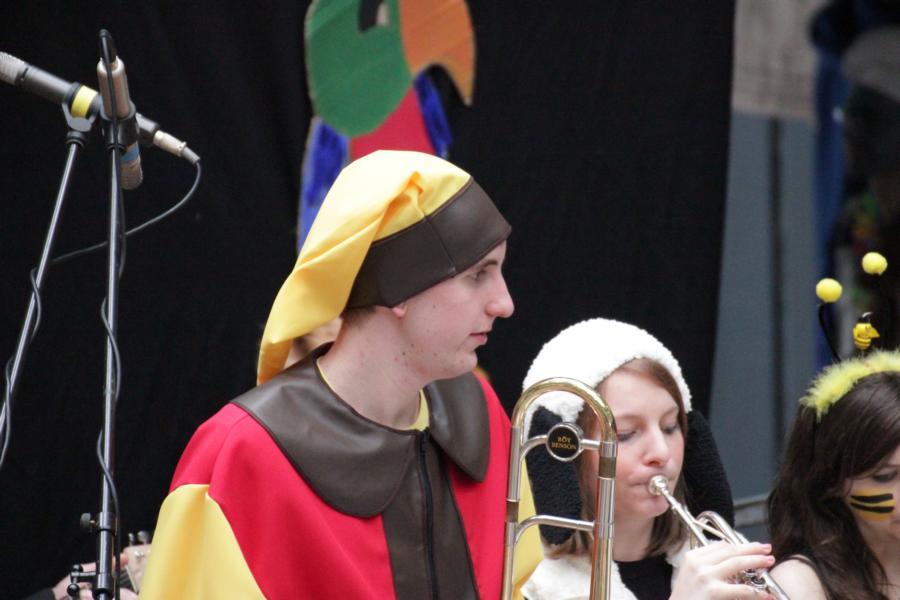 Karneval 2013 (18)