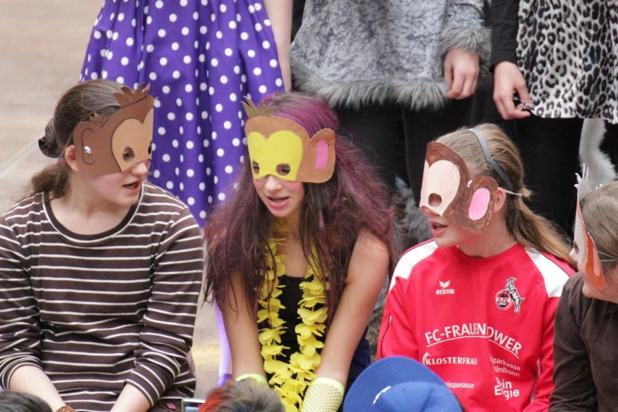 Karneval 2013 (31)