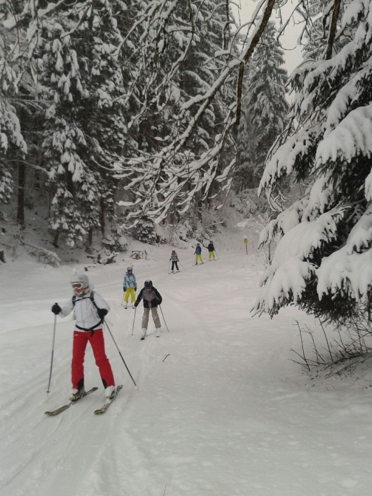 Skifahrt 2016 (19)