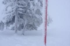Skifahrt 2017 (4)