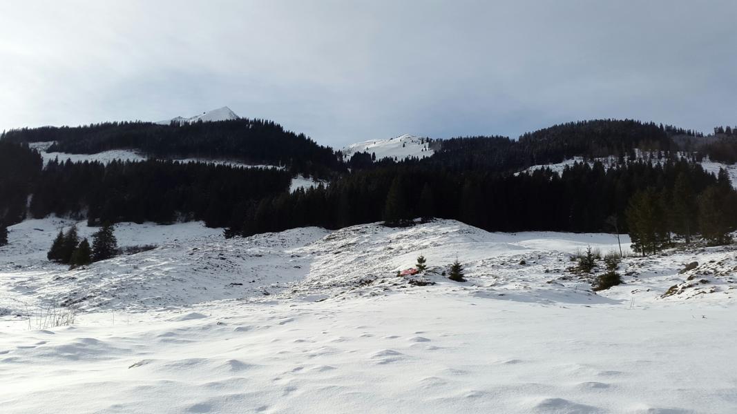 Wildschönau 2015 (82)